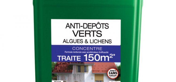 Anti-mousse : un meilleur traitement pour votre toiture